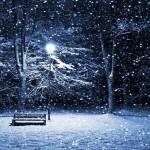 ColdDarkNight