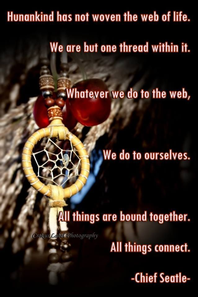 Interconnected-Web